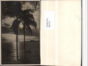 481715,Brazil Rio de Janeiro Stimmungsbild Palmen
