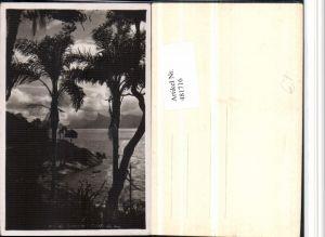 481716,Brazil Rio de Janeiro Conta de Aulo Küste Palmen