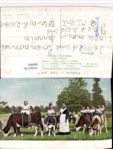 484901,Scherz Humor Babys Kühe Schlauch Euter