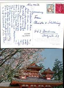 496354,Japan Kyoto Heian Shrine Schrein Tempel Baumblüte