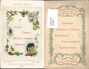 501064,Reklame Ak Pferd Ziege C Chat Cygne Cheval Canard Chevre Cie Coloniale