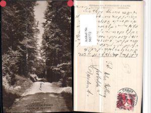 502772,La Chaux-de-Fonds Sentier de Pouillerel Wegpartie Kt Neuenburg
