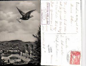 502815,Einsiedeln Kloster Kirche Schwalbe Vogel Kt Schwyz