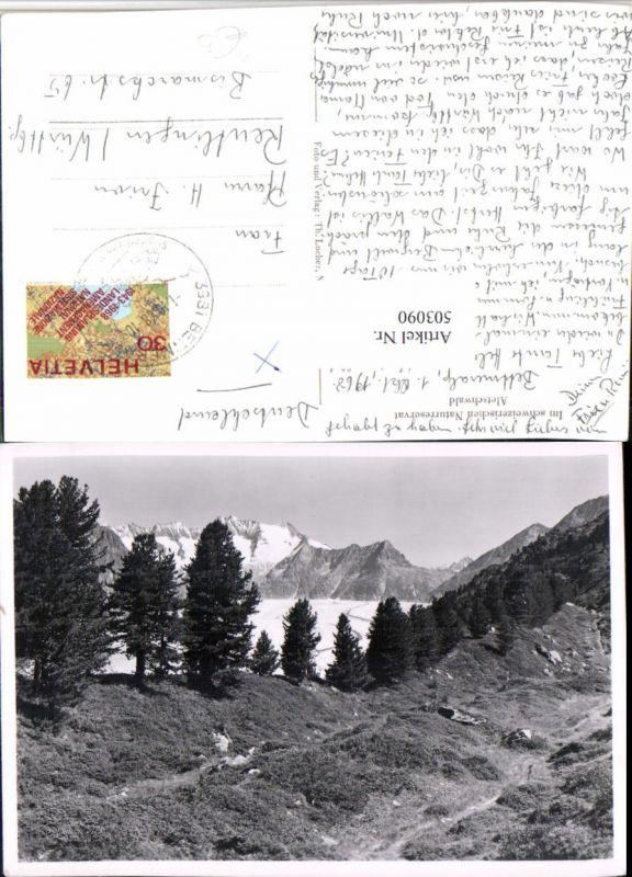 503090,Aletschwald b. Riederalp Landschaft Bergkulisse Kt Wallis