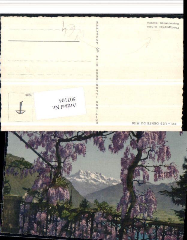 503104,Les Dents du Midi Bergkulisse Kt Wallis pub Foto A. Kern