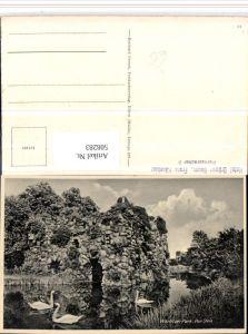 508283,Wörlitzer Park b. Wörlitz Stein Schwäne