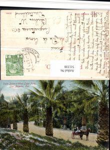 511338,California Los Angeles Palm Drive at West Lake Park Palmen Kutsche