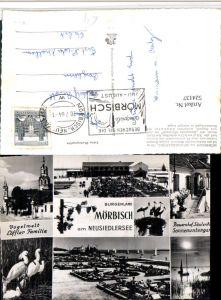 524137,Mörbisch am See Kirche Bauernhof Störche Mehrbildkarte