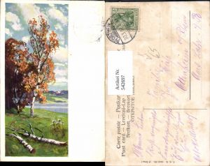 542697,Künstler AK Splitgerber jun. Bäume Birken pub Theo Stroefer 681