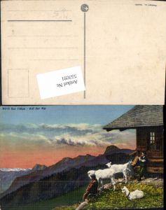 553091,Tiere Sur Alpe Auf der Alp Alpe Ziege Schweiz