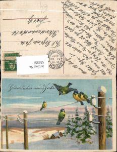 559557,Neujahr Vogel Vögel Stromleitung Winterlandschaft