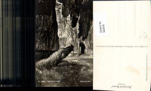 562918,Bärengrotte Höllgrotten Baar Dom m. Krokodil Höhle Grotte