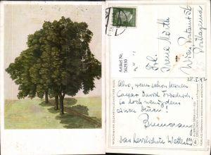 562930,Künstler Ak Albrecht Dürer Drei Linden Bäume Baum