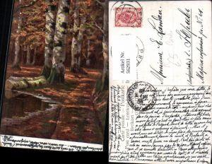 562931,Künstler Ak Birken Birke Wald Bäume Baum