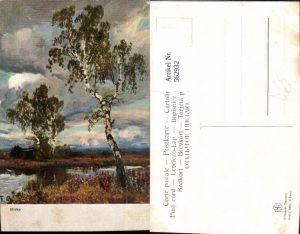 562932,Künstler Ak Birken Birke Wald Bäume Baum
