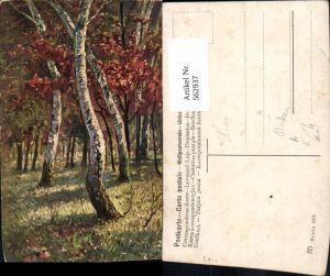 562937,Künstler Ak Birken Birke Bäume Baum