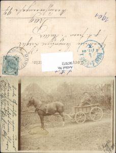 567072,Foto-AK Müglitz Mohelnice Sumperk R. Ziegler m. Pferd Kutsche Pferdewagen