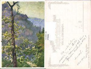 570361,Künstler AK E. F. Hofecker Wilder Steingraben Altvater Sudeten pub Schulverein 429