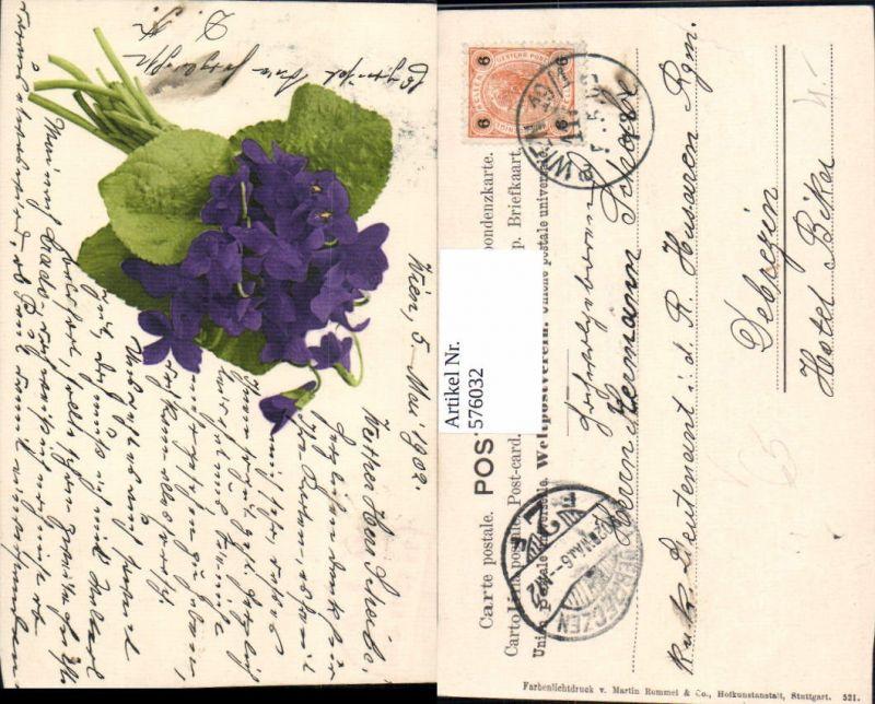 576032,Botanik Veilchen pub Martin Rommel Stuttgart 521