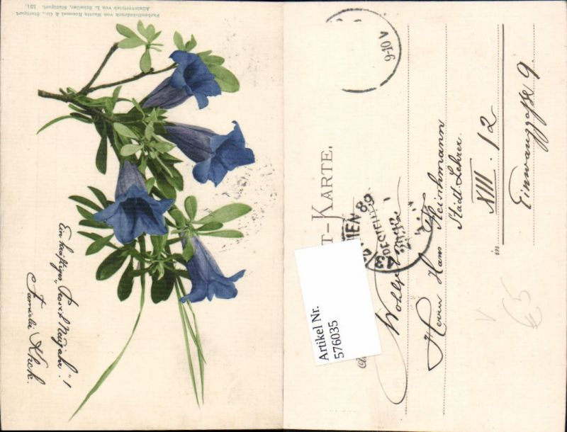 576035,Botanik Blumen pub Martin Rommel Stuttgart 531