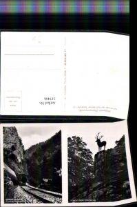 317446,Höllental im Schwarzwald Hirschsprung Tunnel Mehrbildkarte