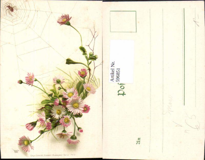 596851,Gänseblümchen m. Spinne Spinnennetz Netz Tiere Blumen pub Edgar Schmidt 7012