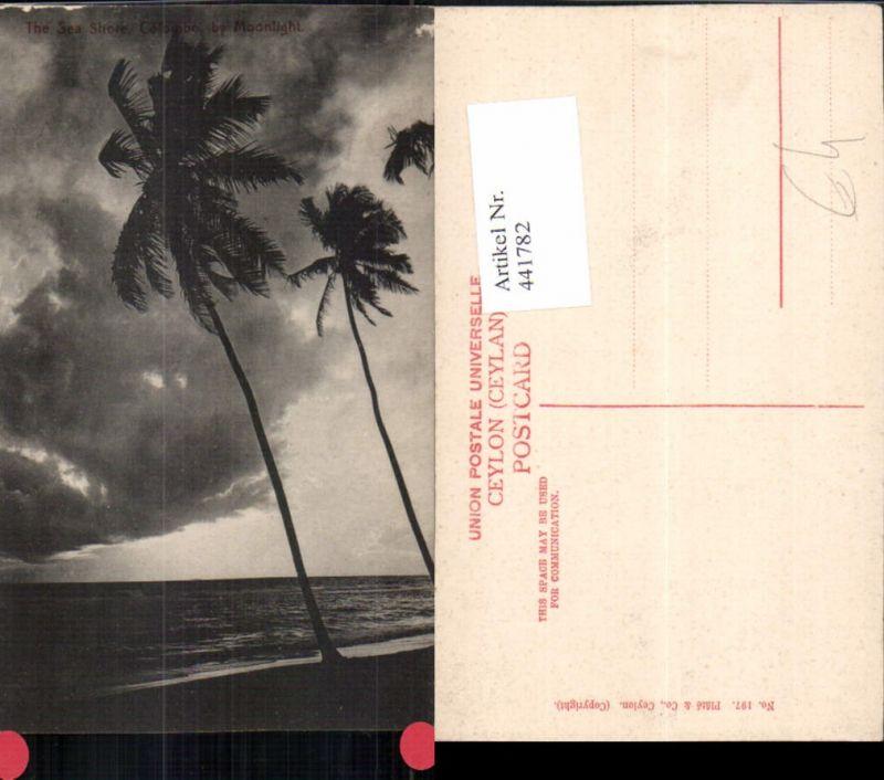 441782,Ceylon Sri Lanka Colombo Sea Shore Meer Palmen