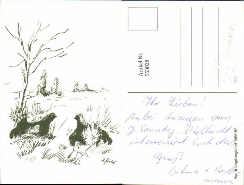553028,Jagd Jäger Tiere Auerhahn