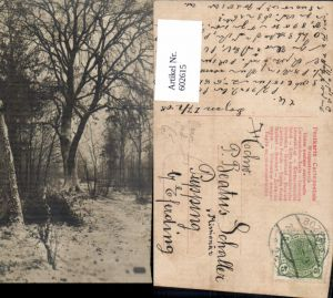 602615,Baum Bäume Wald Winteransicht Ak nach Missinoär Schaller Pupping Eferding