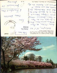 603908,Washington D.C. Washington Jefferson Memorial Cherry Blossom Cherry Trees are in bloom