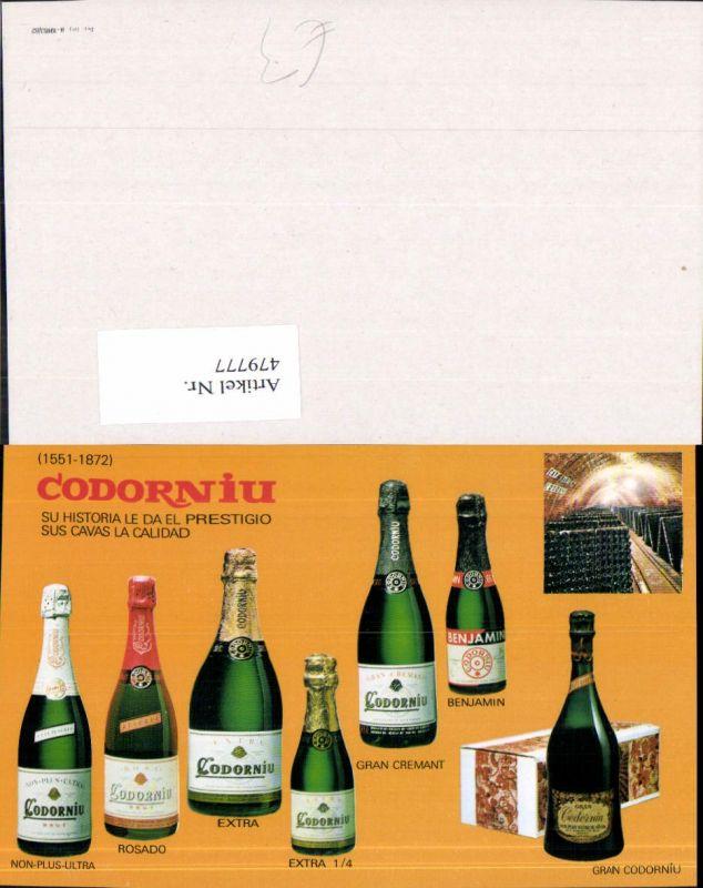 479777,Reklame Codorniu Sekt Wein Alkohol Flaschen Weinkeller