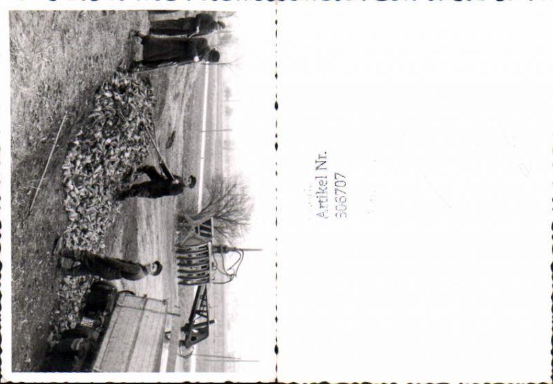 606707,Foto Bauern Zuckerrüben Ernte Rüben