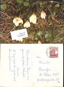617376,Stempel Ravelsbach 1973
