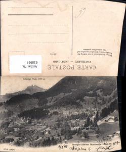 618914,Wengen Berner Oberland Schynige Platte