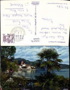 620449,Brissago Lago Maggiore Palme