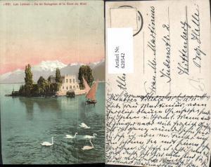620542,Montreux Lac Leman Ile de Salagnon et la Dent du Midi Schwan Schwäne Segelboot