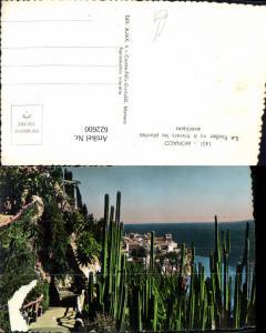 622600,Foto Ak Monaco Le Rocher vu a travers les plantes exotiques Kaktus Kakteen