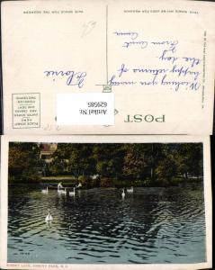 629585,Sunset Lake Asbury Park Schwan Schwäne New Jersey
