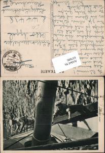 637095,WK 2 Die Wehrmacht Marine Kriegsmarine Matrose Feldpost Luftgaupostamt