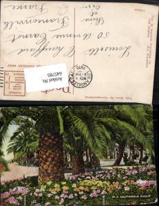 645785,California Park Palme Stp. Los Angeles to Franconville Seine et Oise