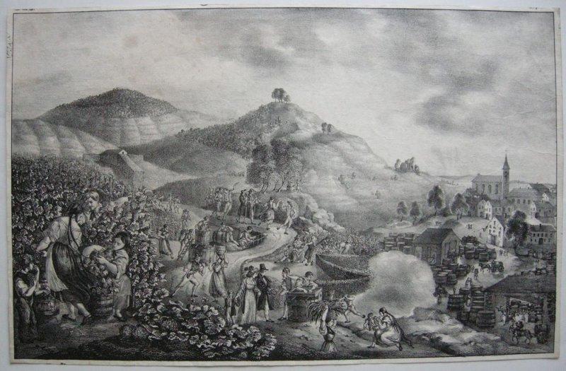 Weinlese Weinfest Weinberge detailfreudige Orgi Lithografie 1830 Biedermeier