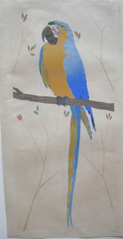 Papagei gouachiertes Orig.-Aquarell um 1950