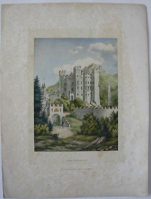Schloss Hohenschwangau Orig Farblithographie J. Dilger 18450 Allgäu Bayern