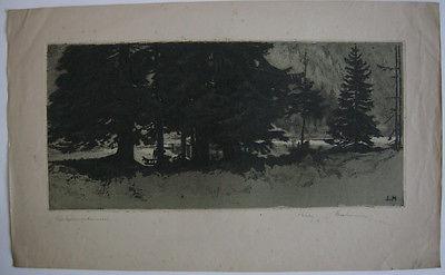 Ludwig Hesshammer (1872-1956) Hochgebirgstannen Orig Aquatinta 1920 signiert