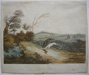 Coursing Jagd Hasenjagd Orig Farblithographie 1809 England Windhunde