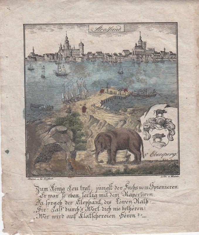 Stralsund Vorpommern Orig Lithografie Walde 1830 Zittauisches Tagebuch