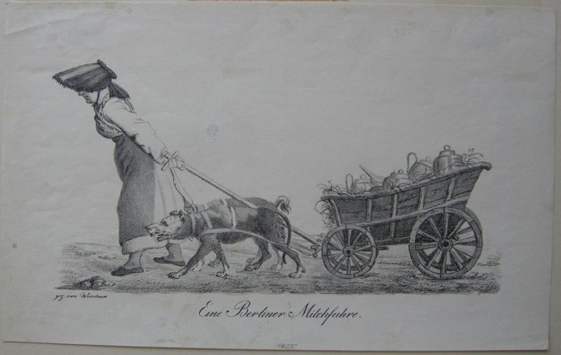 Eine Berliner Milchfuhre Milchverkäuferin Orig Lithografie Weindauer 1825