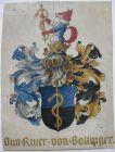 Wappen Otto Ritter von Bollinger (1843-1909) Anatom Pathologe Orig Gouache 1904