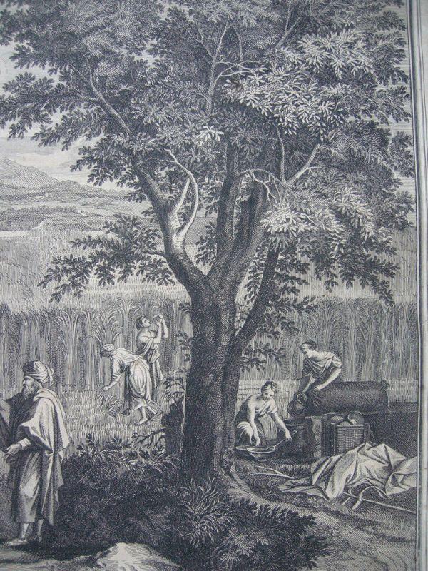Jean Pesne  (1623-1700) Jahreszeiten Sommer Poussin Orig Kupferstich 1690 2