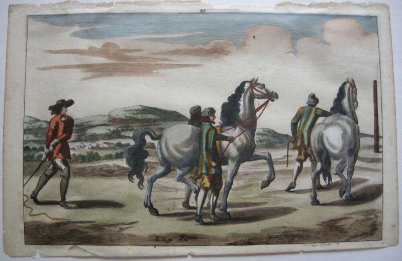 Nicolas Schurtz Erste Dressurübungen kolor Kupferstich 1678 Pferdedressur
